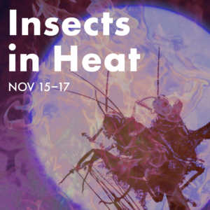Insects in Heat: Nov 15-17